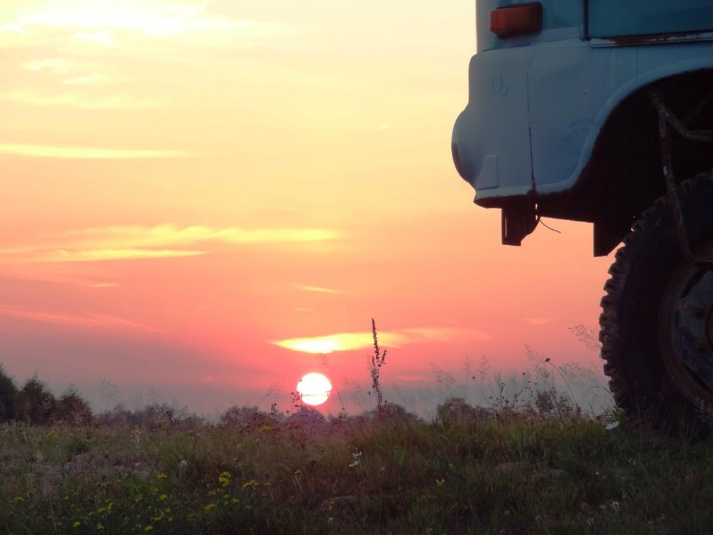 Robur im Sonnenuntergang